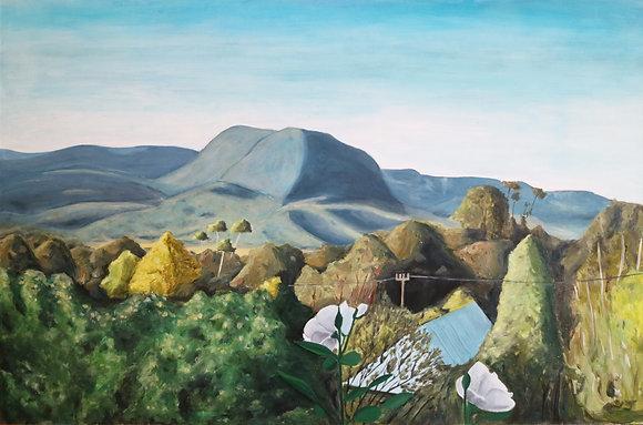 "101 ""Kangaroo Valley"" by Tom Keukenmeesoter"