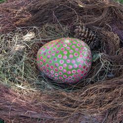 OD_BCrawford_Dinosaur Egg & Nest