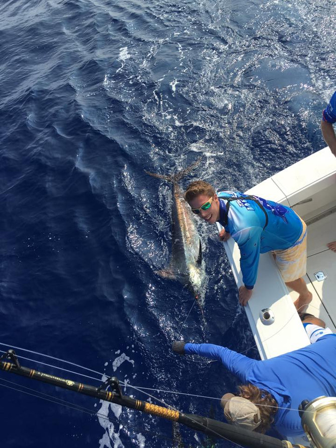 Fun few days with the Aussies 1/3 on blues 1/1 on spears 1/1 on striped marlin and 1/2 on ahi.