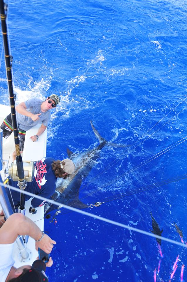 blue marlin fishing charters hawaii