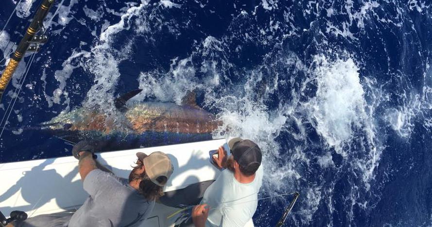 hawaii sportfishing