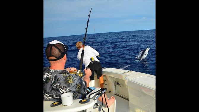 Fun couple days last week with Luke and Rebecca. 3 blues, 3 spears and 2 ahi.