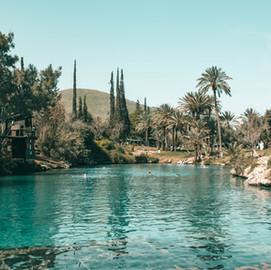 Gan Hashlosha: a must visit tropical oasis in Northern Israel