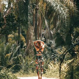Tel Aviv's hidden tropical paradise