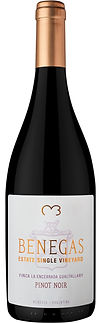 Benegas Estate Single Vineyard Finca La Encerrada Gualtallary Pinot Noir