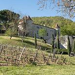 vin-cayx-danemark-2.jpg