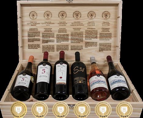 Kit Casa Silva Wine Challenge.png