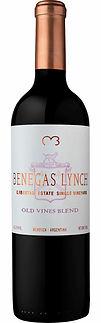 Benegas Lynch Libertad Estate Single Vineyard Old Vines Blend