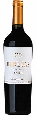 Benegas Estate Wine Gualtallary Malbec