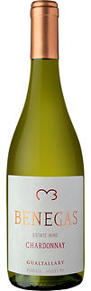 Benegas Estate Wine Gualtallary Chardonnay
