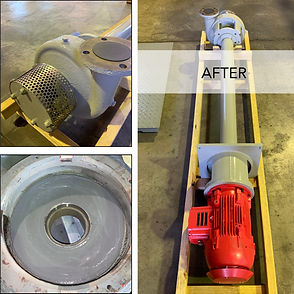 Vertical Centrifugal Sump Pump Repair-AF