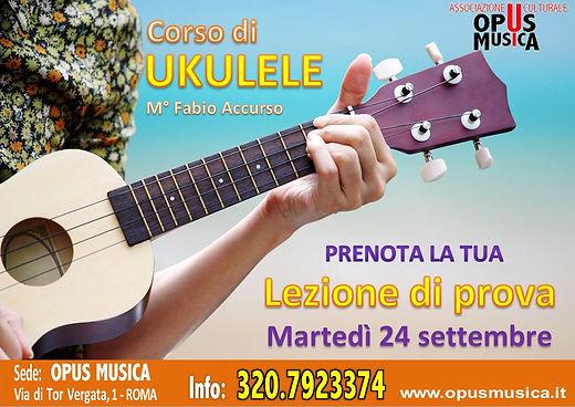 Promo UKULELE.JPG