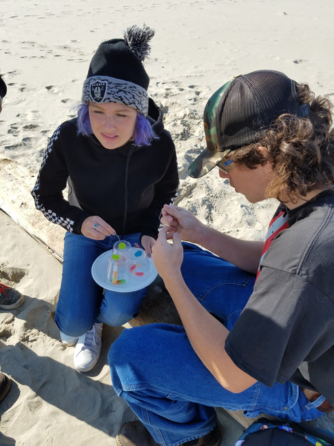 Problem Solving Activities at Cannon Beach