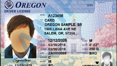 sample driver's license.png