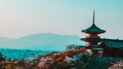 Top 20 Instagram Influencers in Japan in 2021