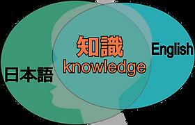 英語 日本語 知識