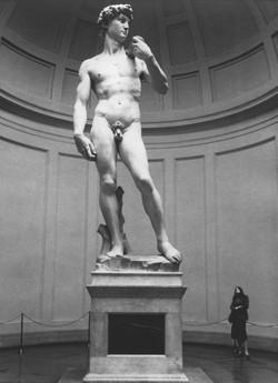 Florencie, Accademia