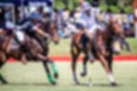 WPC_Colts417.jpg