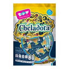 22012020_MOCKUP_BOLSA_CHELADOTA 72 DPI.p