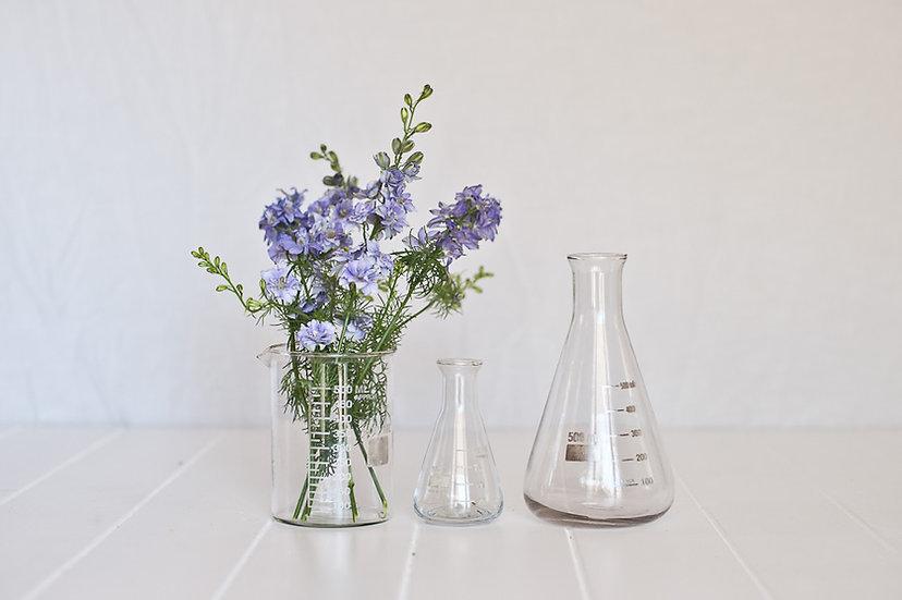 Scientific Glass Beaker Vase