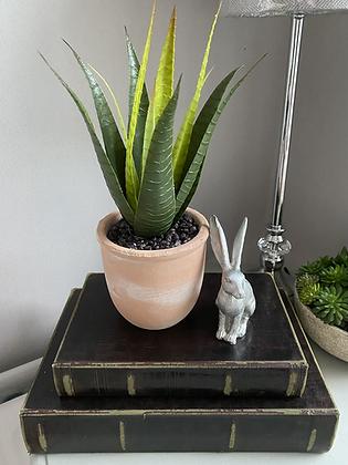 Aloe Vera  In a terracotta pot( faux plant )