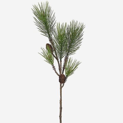 Pine spray with pine cones