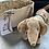 Thumbnail: Dog soft Toy in fabric Bag
