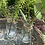 Thumbnail:  Spring rattan tray special