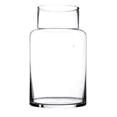 Clear glass amaryllis vase