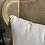 Thumbnail: Cane wingback chair