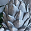 Thumbnail: Tall Closed Pine Cone