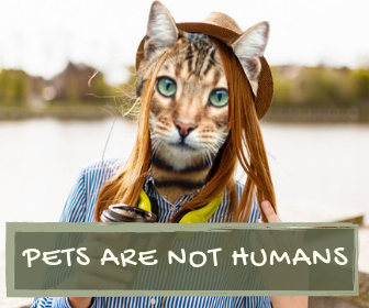 Pets are not humans!