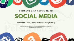 Projects and Social Media