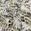 Thumbnail: Printed Chiffon-Sage