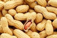 how do i deal with my food allergy gluten wheat peanut tree nuts milk dairy soy egg allergy