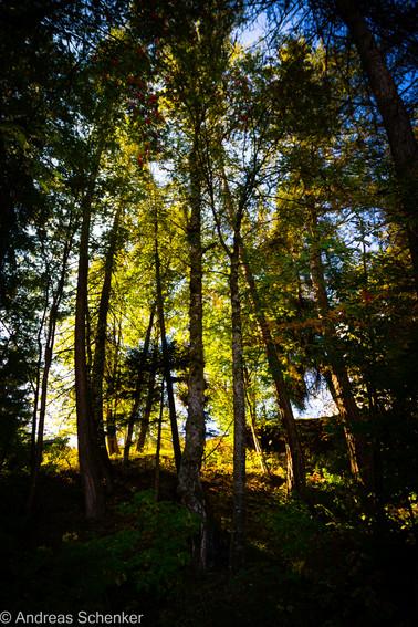 Reisen_Natur_052.jpg