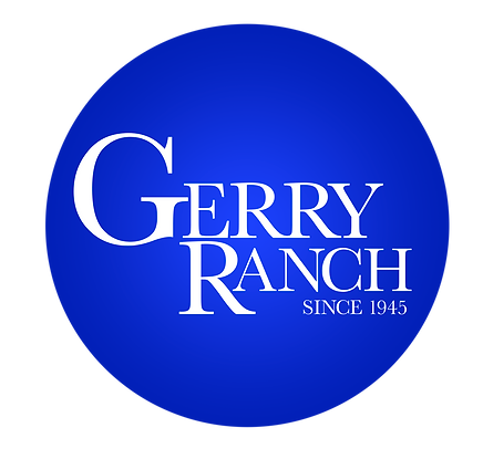 Logo-Blue-Dot.png