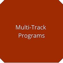 Multi-Track.png