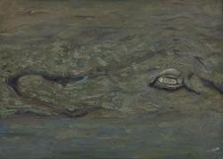 Drillo  | 2010 | 40x70