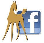 horse facebook logo.jpg