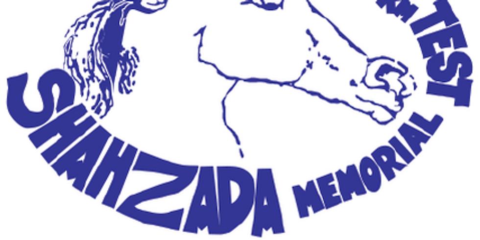 Shahzada