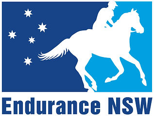 Logo_NSW_Endurance_Art_Large_Cropped[1].