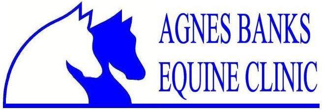 Agnes Banks Equine Clinic