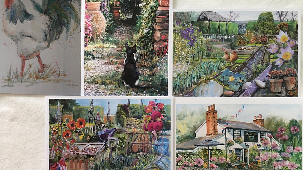 'Country life' pack of greetings cards