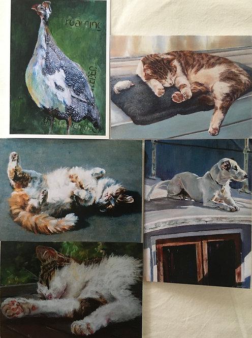 'Animal' pack of greetings cards