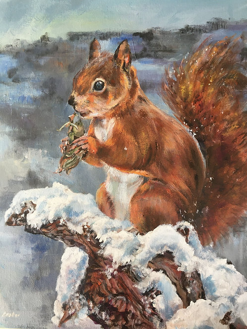 """Squirrel in snow"""