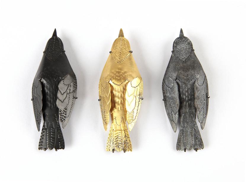 birds 60.jpg
