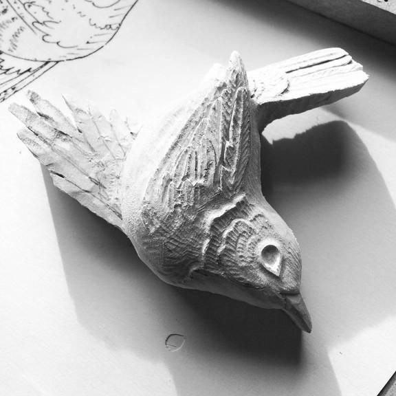 bird 60 .jpg