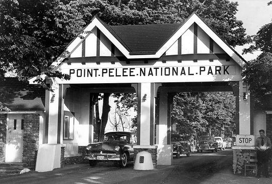 pointpelee1954.jpg