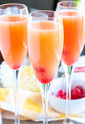 Blushing-Mimosa.jpg